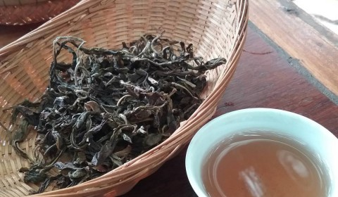Tea from northern Thailand
